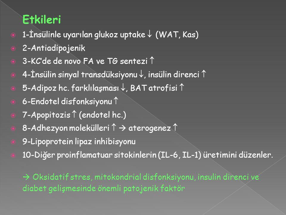 Etkileri  1-İnsülinle uyarılan glukoz uptake  (WAT, Kas)  2-Antiadipojenik  3-KC'de de novo FA ve TG sentezi   4-İnsülin sinyal transdüksiyonu 
