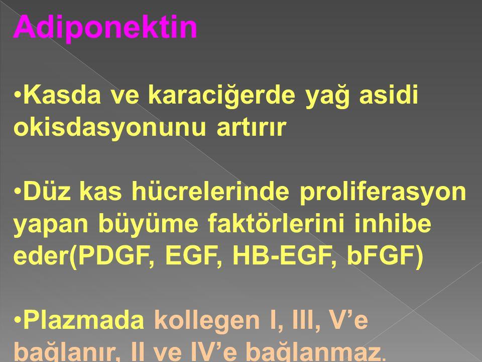 Adiponektin Kasda ve karaciğerde yağ asidi okisdasyonunu artırır Düz kas hücrelerinde proliferasyon yapan büyüme faktörlerini inhibe eder(PDGF, EGF, H