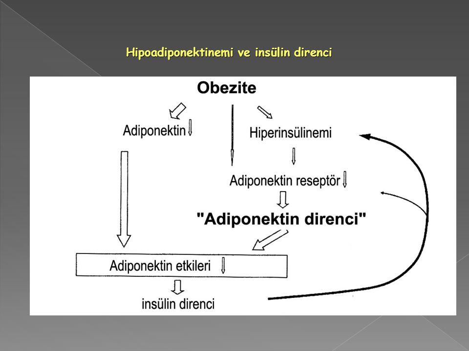 Hipoadiponektinemi ve insülin direnci