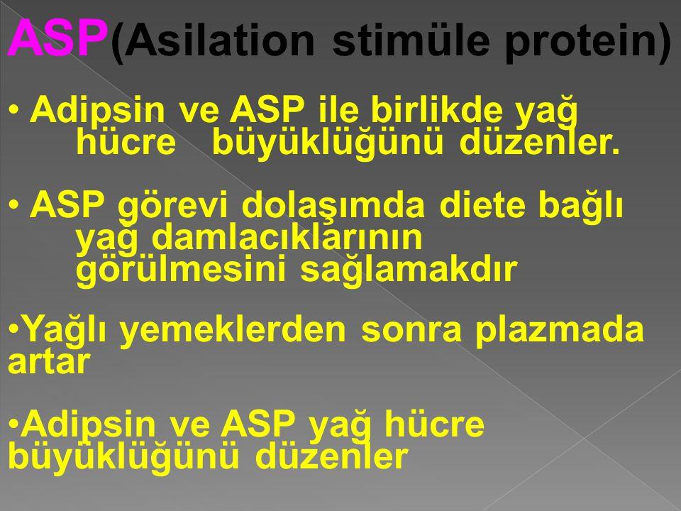 ASP (Asilation stimüle protein) Adipsin ve ASP ile birlikde yağ hücre büyüklüğünü düzenler. ASP görevi dolaşımda diete bağlı yağ damlacıklarının görül