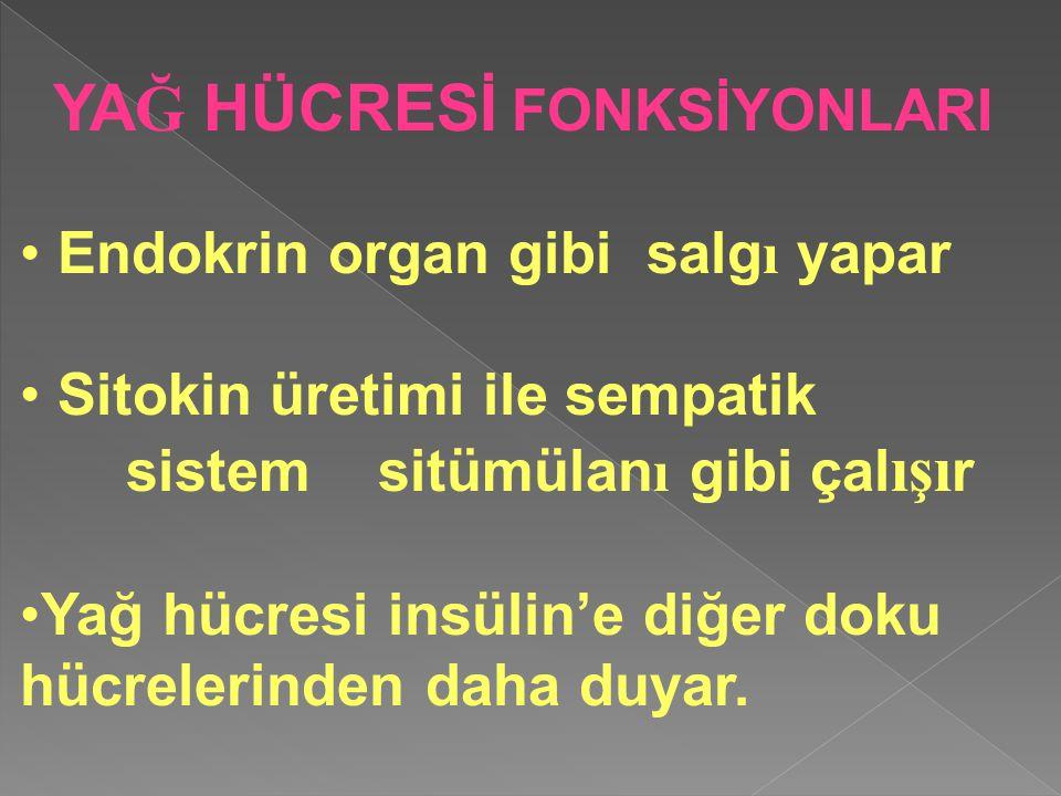 Endokrin organ gibi salg ı yapar Sitokin üretimi ile sempatik sistem sitümülan ı gibi çal ışı r Yağ hücresi insülin'e diğer doku hücrelerinden daha du