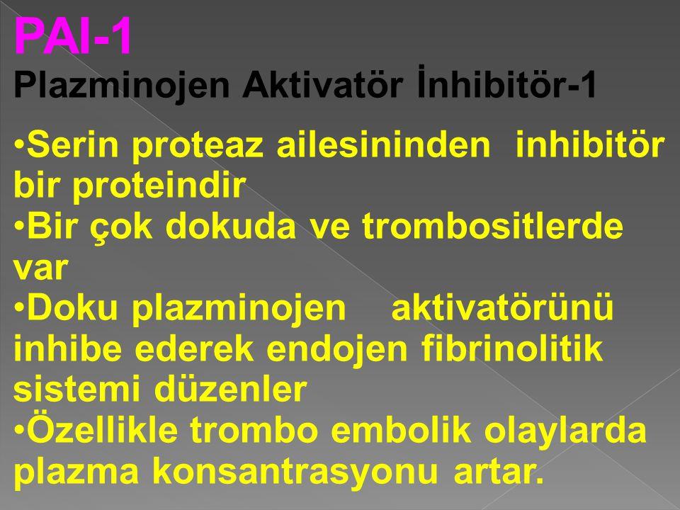 PAI-1 Plazminojen Aktivatör İnhibitör-1 Serin proteaz ailesininden inhibitör bir proteindir Bir çok dokuda ve trombositlerde var Doku plazminojen aktivatörünü inhibe ederek endojen fibrinolitik sistemi düzenler Özellikle trombo embolik olaylarda plazma konsantrasyonu artar.