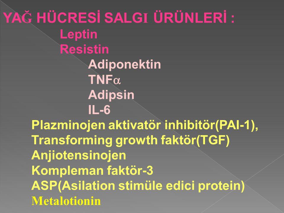 YA Ğ HÜCRESİ SALG I ÜRÜNLERİ : Leptin Resistin Adiponektin TNF  Adipsin IL-6 Plazminojen aktivatör inhibitör(PAI-1), Transforming growth faktör(TGF) Anjiotensinojen Kompleman faktör-3 ASP(Asilation stimüle edici protein) Metalotionin