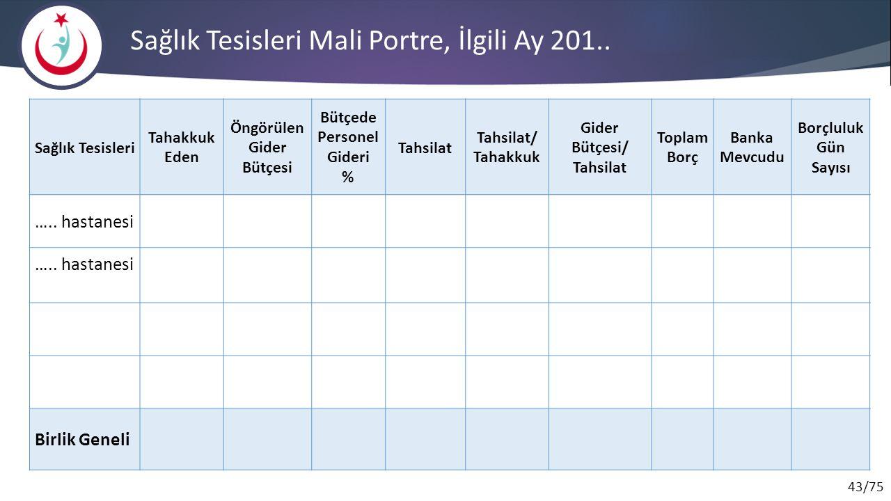 43/75 Sağlık Tesisleri Mali Portre, İlgili Ay 201..