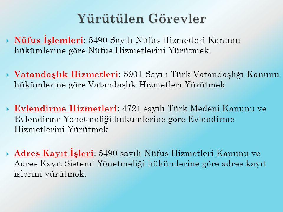2013 YILINDA UYGULANACAK PROJE T.C. KİMLİK KARTI (TCKK)