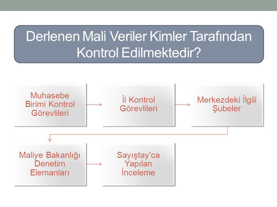 Muhasebe Birimi Kontrol Görevlileri İl Kontrol Görevlileri Merkezdeki İlgili Şubeler Maliye Bakanlığı Denetim Elemanları Sayıştay'ca Yapılan İnceleme