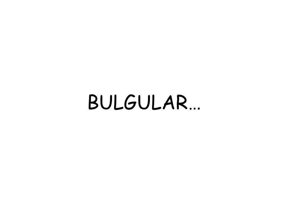 BULGULAR…