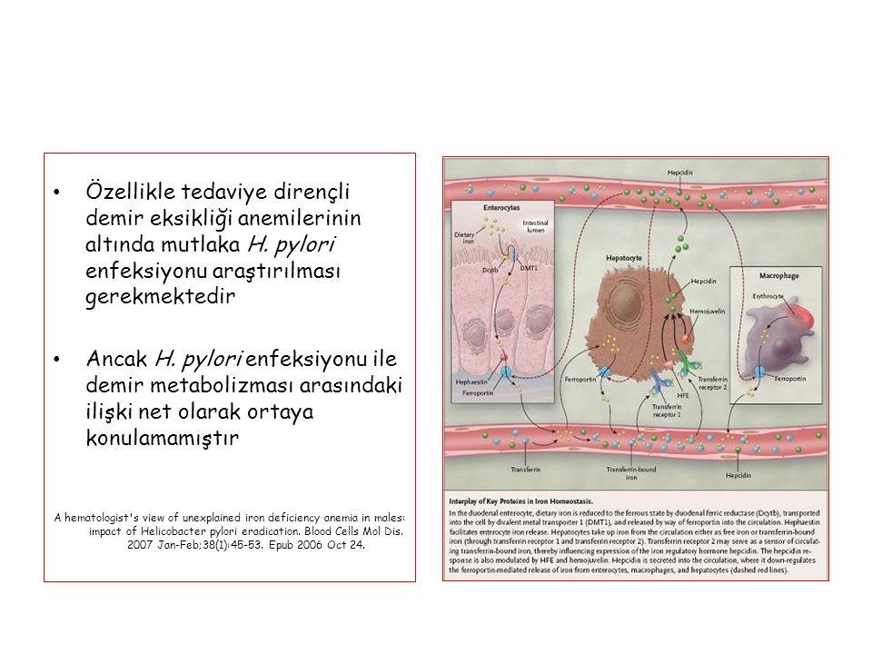 Özellikle tedaviye dirençli demir eksikliği anemilerinin altında mutlaka H. pylori enfeksiyonu araştırılması gerekmektedir Ancak H. pylori enfeksiyonu
