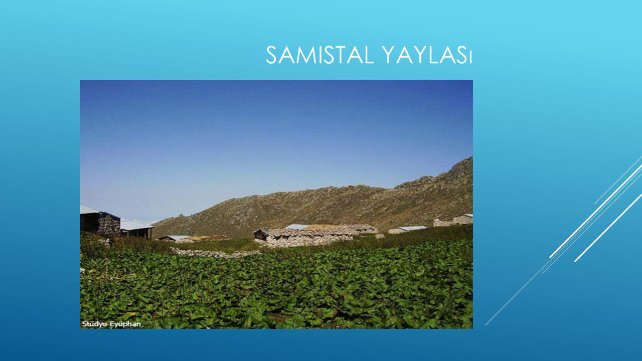 SAMISTAL YAYLASı