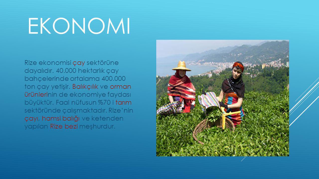 EKONOMI Rize ekonomisi çay sektörüne dayalıdır.