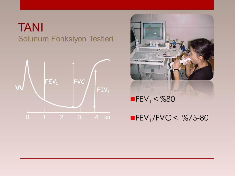 FEV 1 < %80 FEV 1 /FVC < %75-80 FEV 1 FVC FIV 1 01 234sn TANI Solunum Fonksiyon Testleri