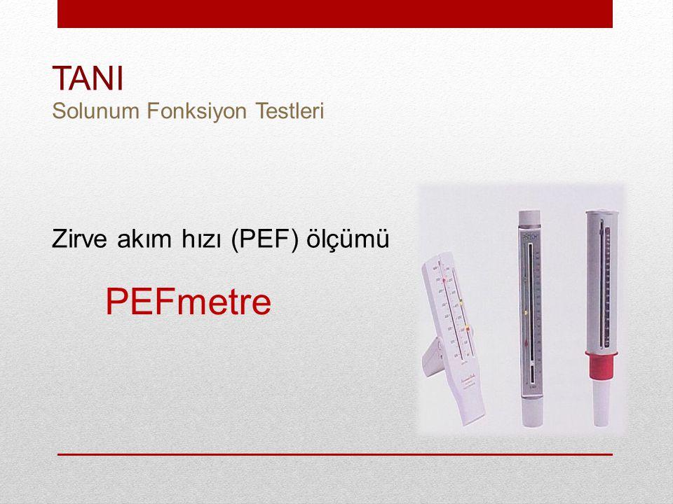 PEFmetre Zirve akım hızı (PEF) ölçümü TANI Solunum Fonksiyon Testleri