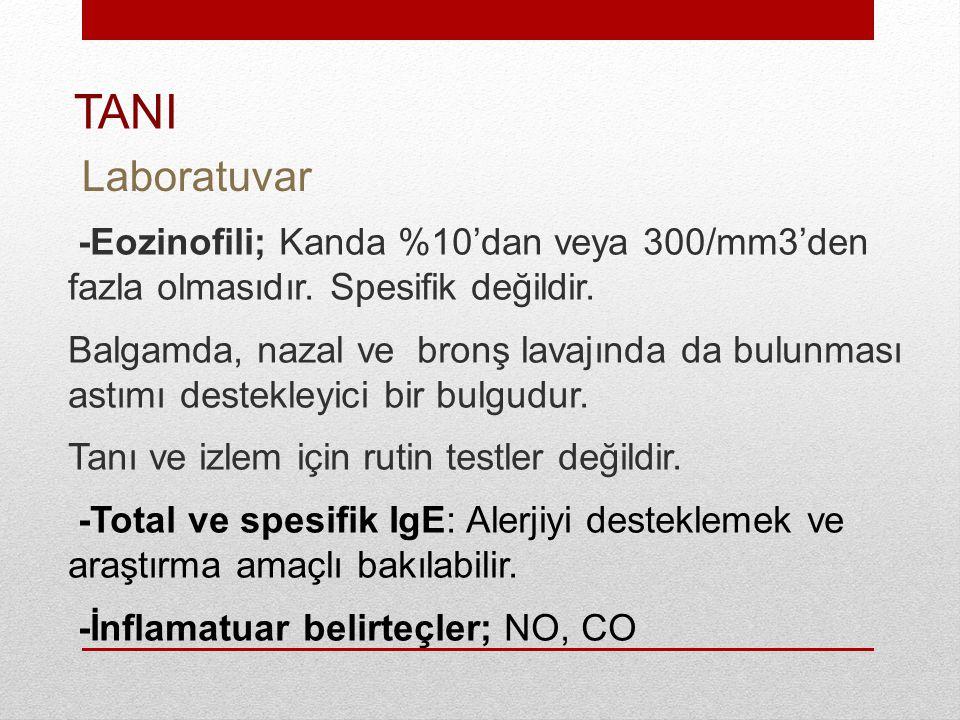 -Eozinofili; Kanda %10'dan veya 300/mm3'den fazla olmasıdır.