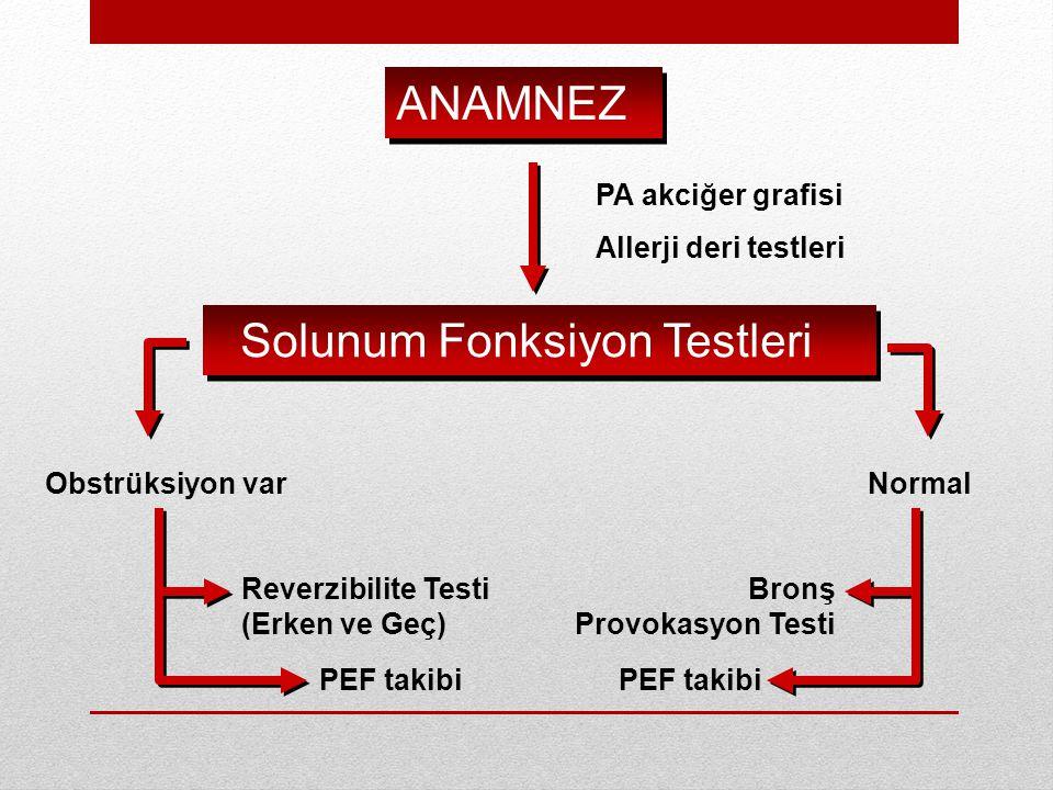 ANAMNEZ Solunum Fonksiyon Testleri Obstrüksiyon varNormal Reverzibilite Testi (Erken ve Geç) PEF takibi Bronş Provokasyon Testi PEF takibi PA akciğer grafisi Allerji deri testleri