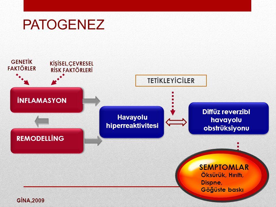 anamnez Astım tanısı anamnez ile konulan bir hastalıktır.