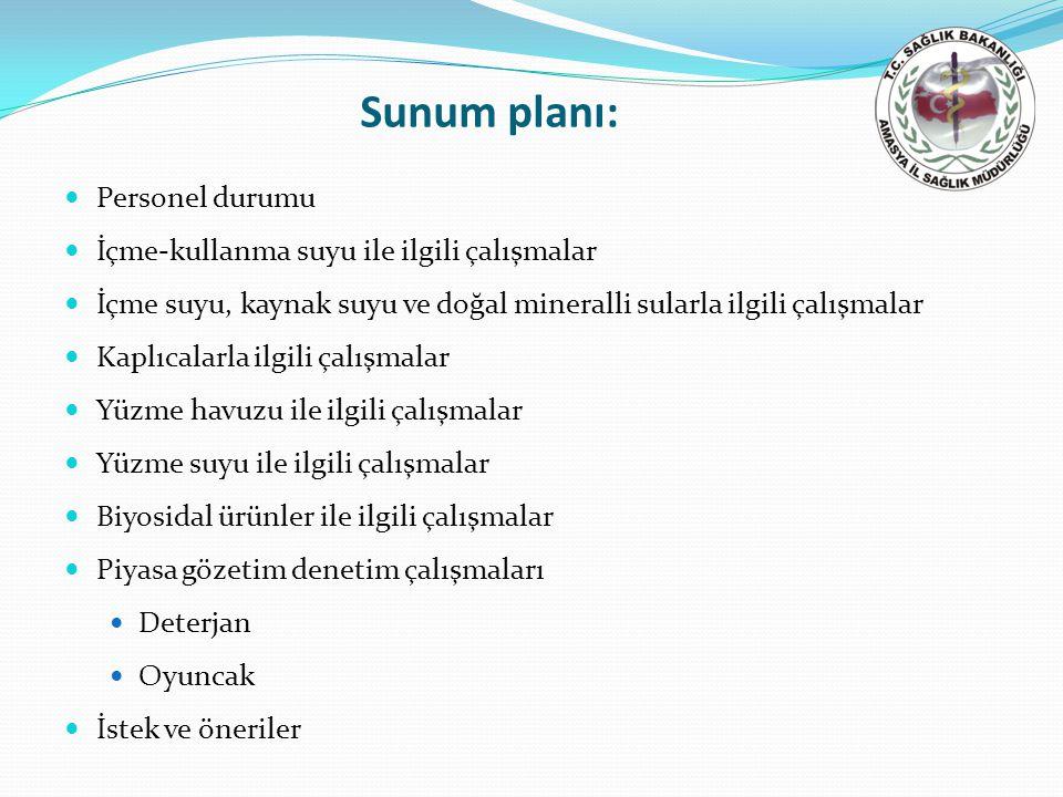 Tablo 8.Amasya ilinin 2010 yılı kaplıcalara yönelik çalışmaları.