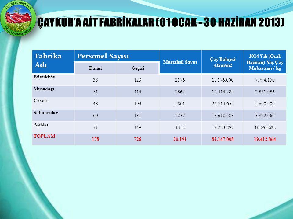ÇAYKUR'A AİT FABRİKALAR (01 OCAK - 30 HAZİRAN 2013) Fabrika Adı Personel Sayısı Müstahsil Sayısı Çay Bahçesi Alanı/m2 2014 Yılı (Ocak Haziran) Yaş Çay