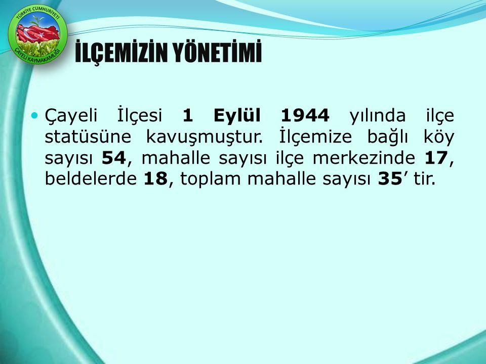 İLÇEMİZİN YÖNETİMİ Çayeli İlçesi 1 Eylül 1944 yılında ilçe statüsüne kavuşmuştur. İlçemize bağlı köy sayısı 54, mahalle sayısı ilçe merkezinde 17, bel