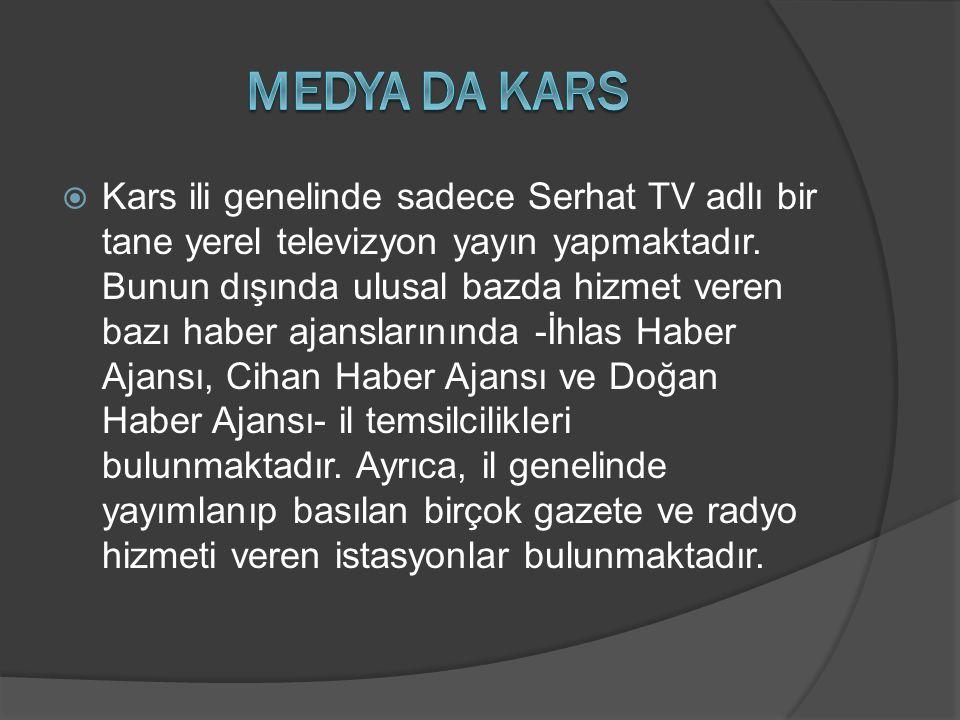  Kars ili genelinde sadece Serhat TV adlı bir tane yerel televizyon yayın yapmaktadır. Bunun dışında ulusal bazda hizmet veren bazı haber ajanslarını