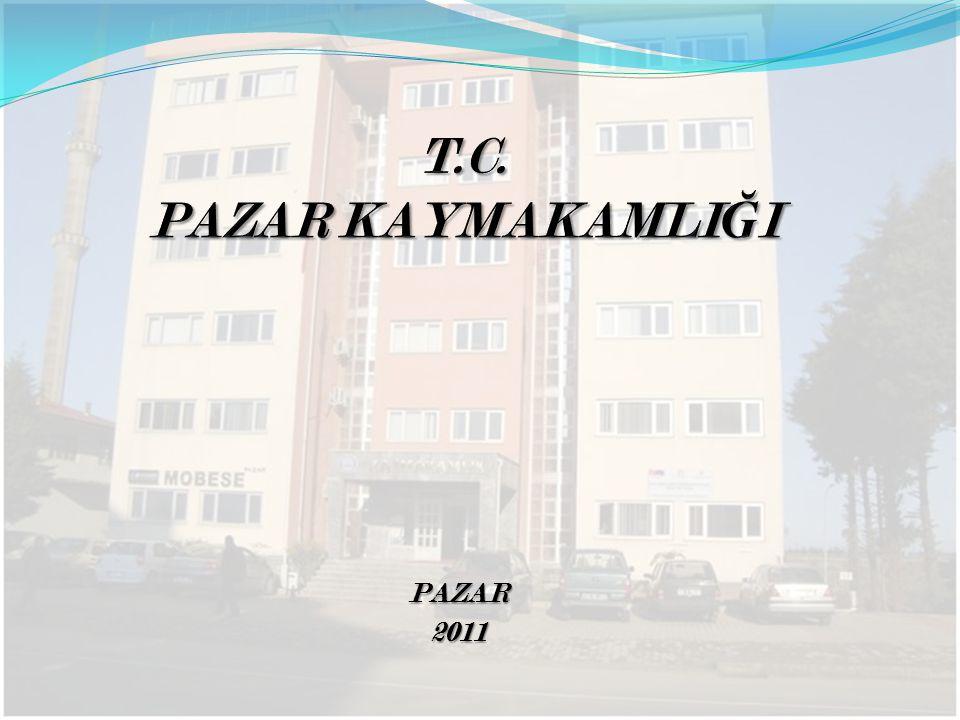 PAZAR PAZAR2011