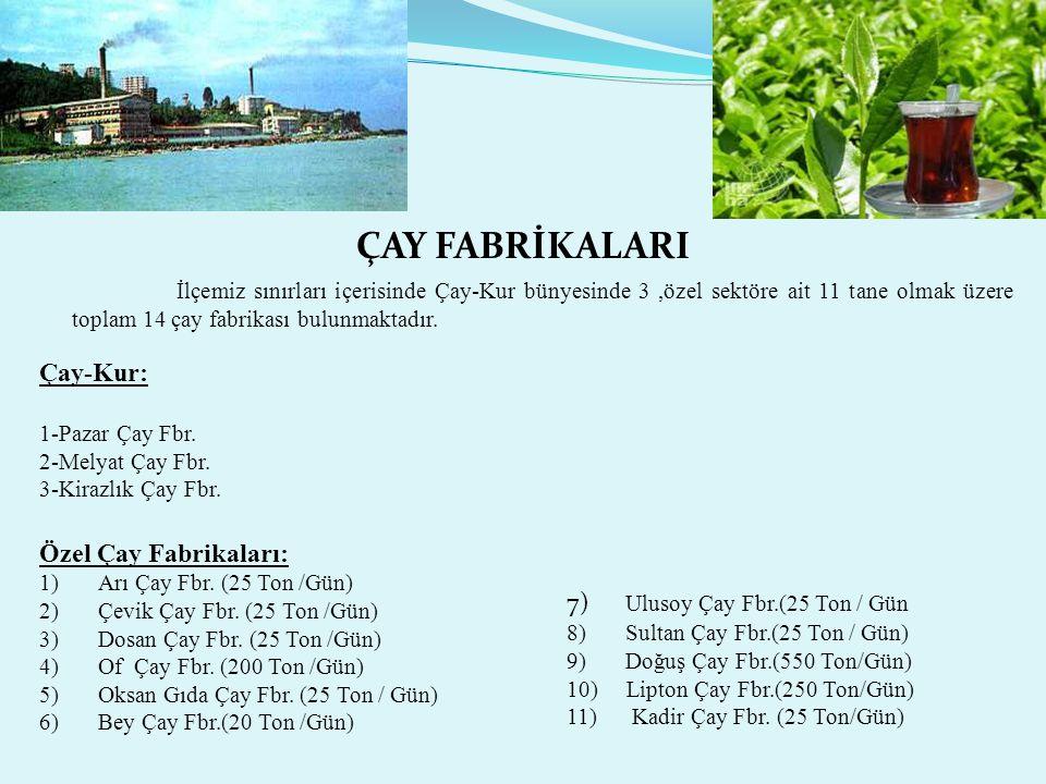 ÇAY FABRİKALARI İlçemiz sınırları içerisinde Çay-Kur bünyesinde 3,özel sektöre ait 11 tane olmak üzere toplam 14 çay fabrikası bulunmaktadır.