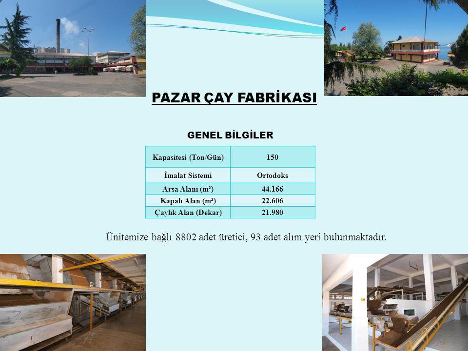 PAZAR ÇAY FABRİKASI Kapasitesi (Ton/Gün)150 İmalat SistemiOrtodoks Arsa Alanı (m²)44.166 Kapalı Alan (m²)22.606 Çaylık Alan (Dekar)21.980 Ünitemize bağlı 8802 adet üretici, 93 adet alım yeri bulunmaktadır.
