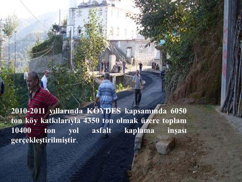 2010-2011 yıllarında KÖYDES kapsamında 6050 ton köy katkılarıyla 4350 ton olmak üzere toplam 10400 ton yol asfalt kaplama inşası gerçekleştirilmiştir.