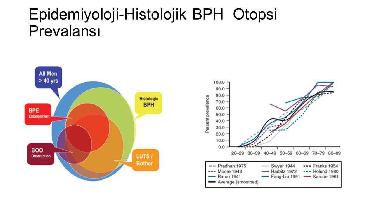 Epidemiyoloji-Histolojik BPH Otopsi Prevalansı