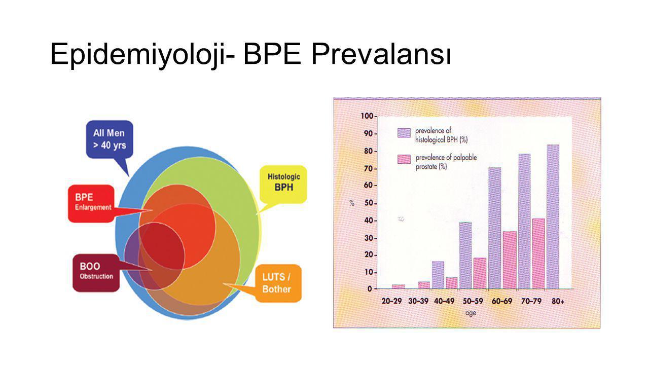 Epidemiyoloji- BPE Prevalansı