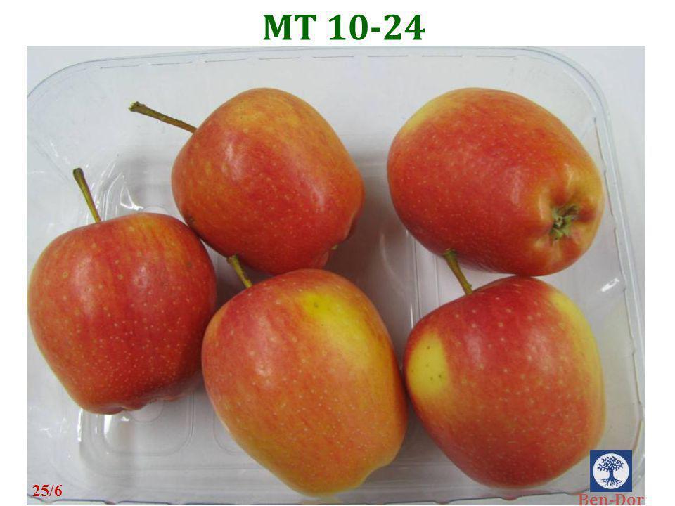 MT 10-24 25/6 Ben-Dor