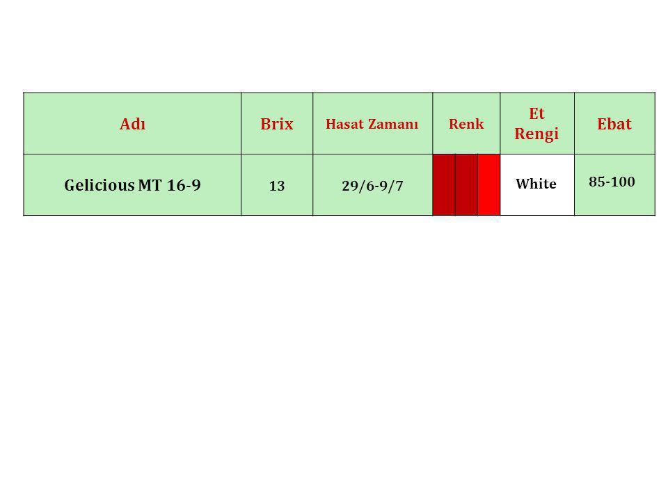 Ebat Et Rengi RenkHasat Zamanı BrixAdı 85-100 White 29/6-9/713 Gelicious MT 16-9