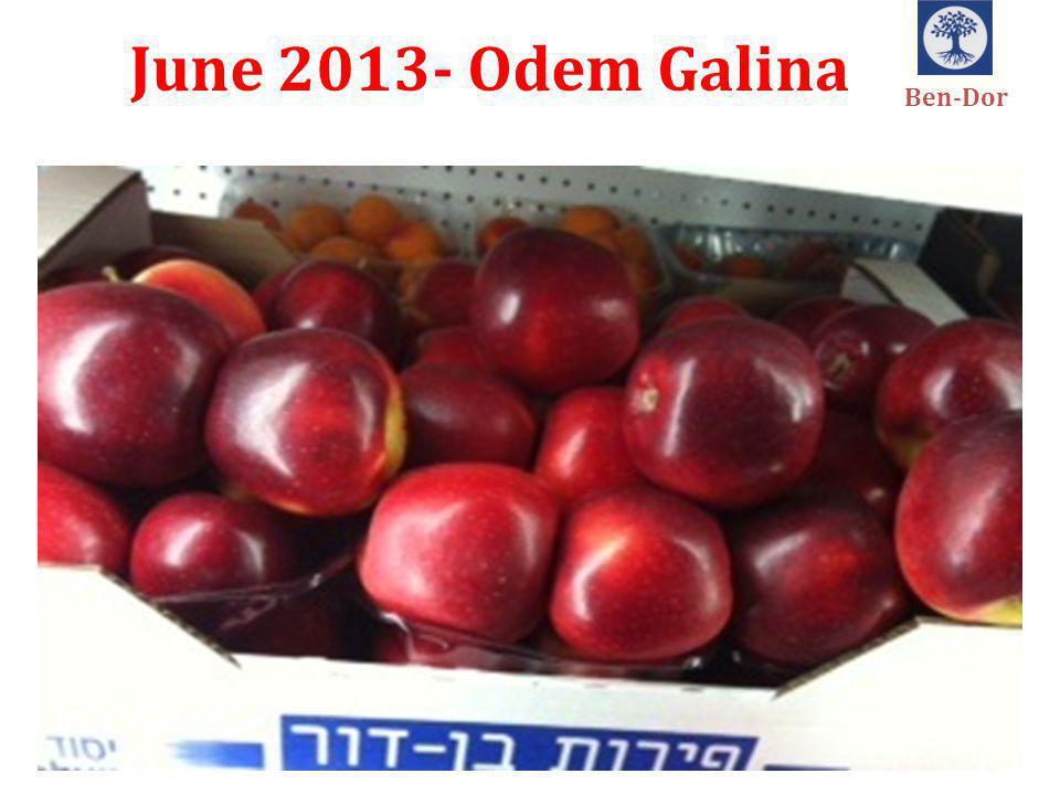 June 2013- Odem Galina Ben-Dor