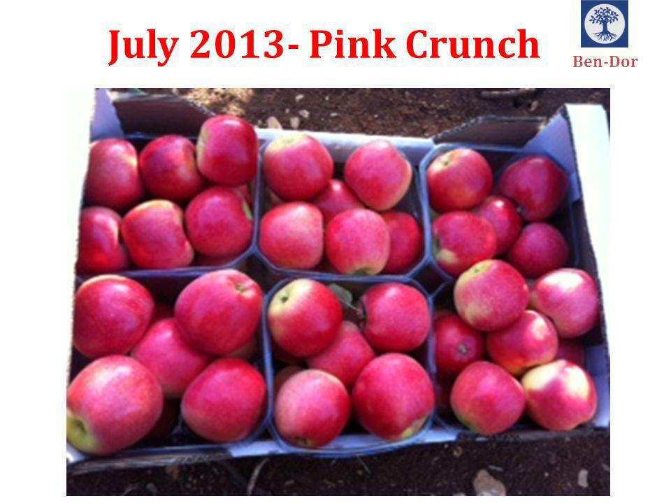July 2013- Pink Crunch Ben-Dor
