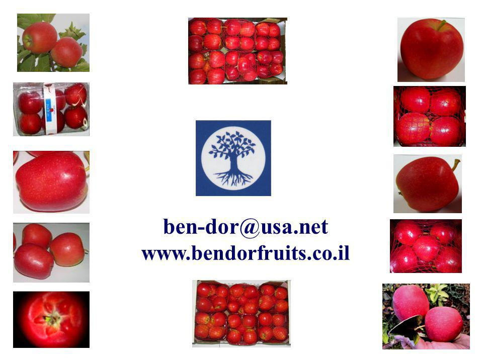 ben-dor@usa.net www.bendorfruits.co.il