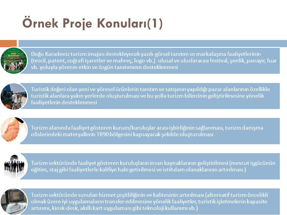 Örnek Proje Konuları(1) Doğu Karadeniz turizm imajını destekleyecek yazılı-görsel tanıtım ve markalaşma faaliyetlerinin (tescil, patent, coğrafi işare