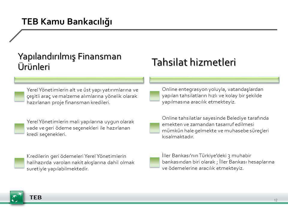 TEB Kamu Bankacılığı Yapılandırılmış Finansman Ürünleri Yerel Yönetimlerin alt ve üst yapı yatırımlarına ve çeşitli araç ve malzeme alımlarına yönelik olarak hazırlanan proje finansman kredileri.
