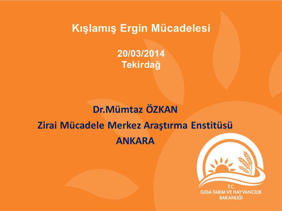 Dr.Mümtaz ÖZKAN Zirai Mücadele Merkez Araştırma Enstitüsü ANKARA Kışlamış Ergin Mücadelesi 20/03/2014 Tekirdağ