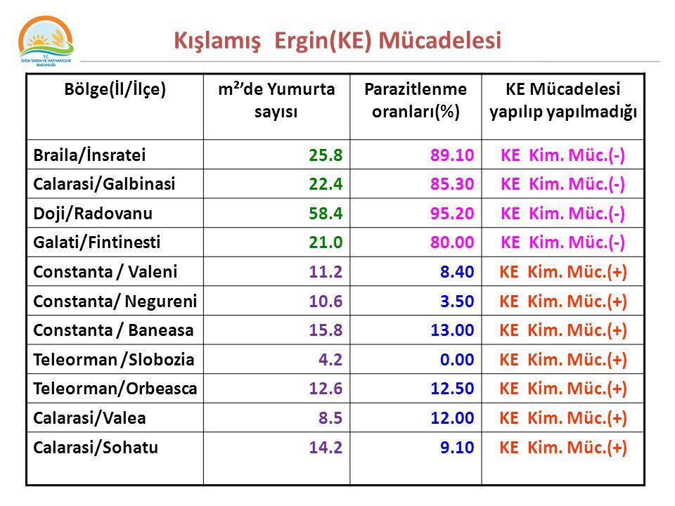 Kışlamış Ergin(KE) Mücadelesi Bölge(İl/İlçe)m²'de Yumurta sayısı Parazitlenme oranları(%) KE Mücadelesi yapılıp yapılmadığı Braila/İnsratei25.8 89.10KE Kim.