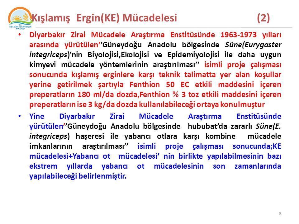 Kışlamış Ergin(KE) Mücadelesi (2) Diyarbakır Zirai Mücadele Araştırma Enstitüsünde 1963-1973 yılları arasında yürütülen''Güneydoğu Anadolu bölgesinde Süne(Eurygaster integriceps)'nin Biyolojisi,Ekolojisi ve Epidemiyolojisi ile daha uygun kimyevi mücadele yöntemlerinin araştırılması'' isimli proje çalışması sonucunda kışlamış erginlere karşı teknik talimatta yer alan koşullar yerine getirilmek şartıyla Fenthion 50 EC etkili maddesini içeren preperatların 180 ml/da dozda,Fenthion % 3 toz etkili maddesini içeren preperatların ise 3 kg/da dozda kullanılabileceği ortaya konulmuştur Yine Diyarbakır Zirai Mücadele Araştırma Enstitüsünde yürütülen''Güneydoğu Anadolu bölgesinde hububat'da zararlı Süne(E.