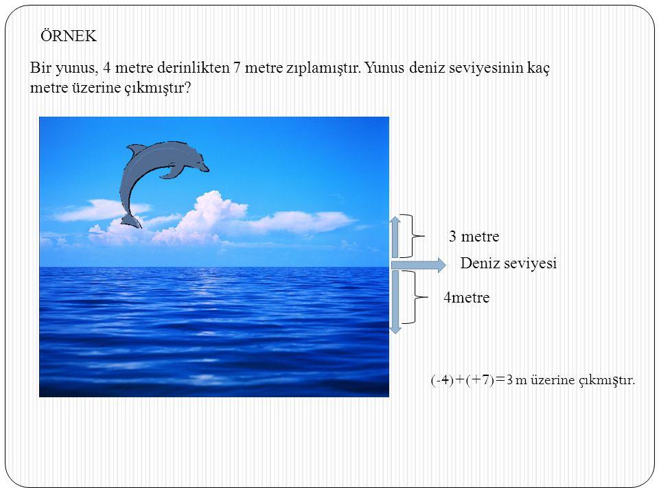 Bir yunus, 4 metre derinlikten 7 metre zıplamıştır. Yunus deniz seviyesinin kaç metre üzerine çıkmıştır? Deniz seviyesi 4metre 3 metre ÖRNEK (-4)+(+7)