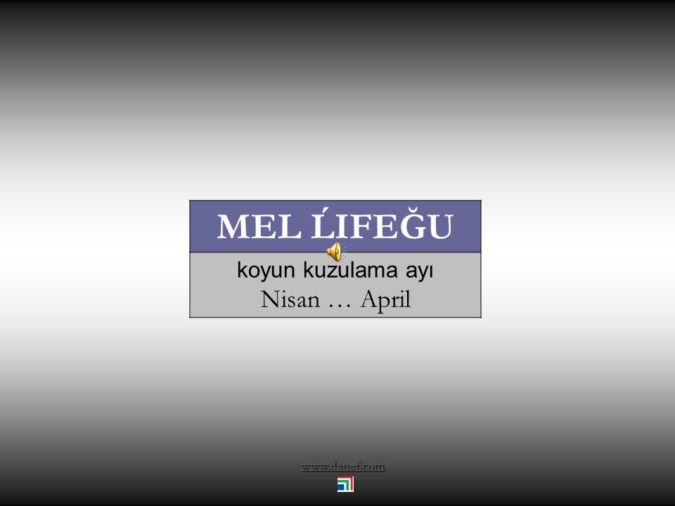 www.danef.com ĞETXAPE yaz öncesi Mart … March