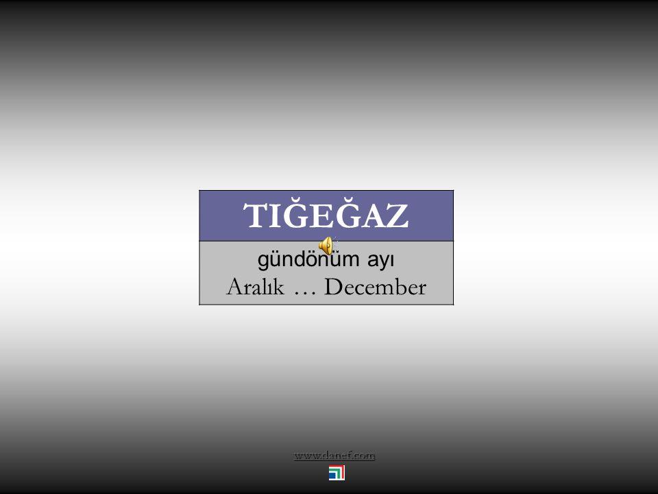 www.danef.com XE Ḱ UWOĞU Av ayı Kasım … November