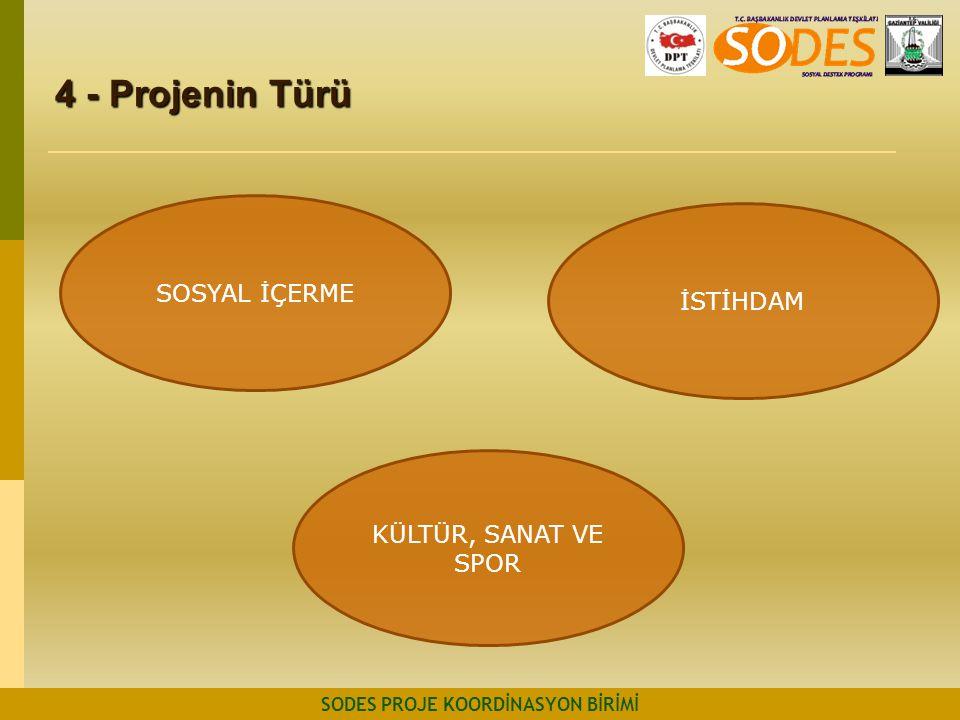 4 - Projenin Türü SODES PROJE KOORDİNASYON BİRİMİ SOSYAL İÇERME KÜLTÜR, SANAT VE SPOR İSTİHDAM