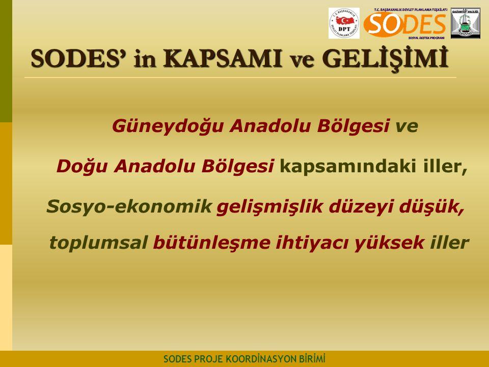 Güneydoğu Anadolu Bölgesi ve Doğu Anadolu Bölgesi kapsamındaki iller, Sosyo-ekonomik gelişmişlik düzeyi düşük, toplumsal bütünleşme ihtiyacı yüksek il