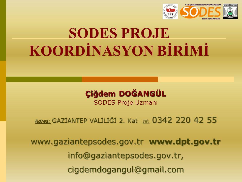 Çiğdem DOĞANGÜL SODES Proje Uzmanı Adres: GAZİANTEP VALİLİĞİ 2. Kat Tlf: 0342 220 42 55 www.gaziantepsodes.gov.tr www.dpt.gov.tr info@gaziantepsodes.g