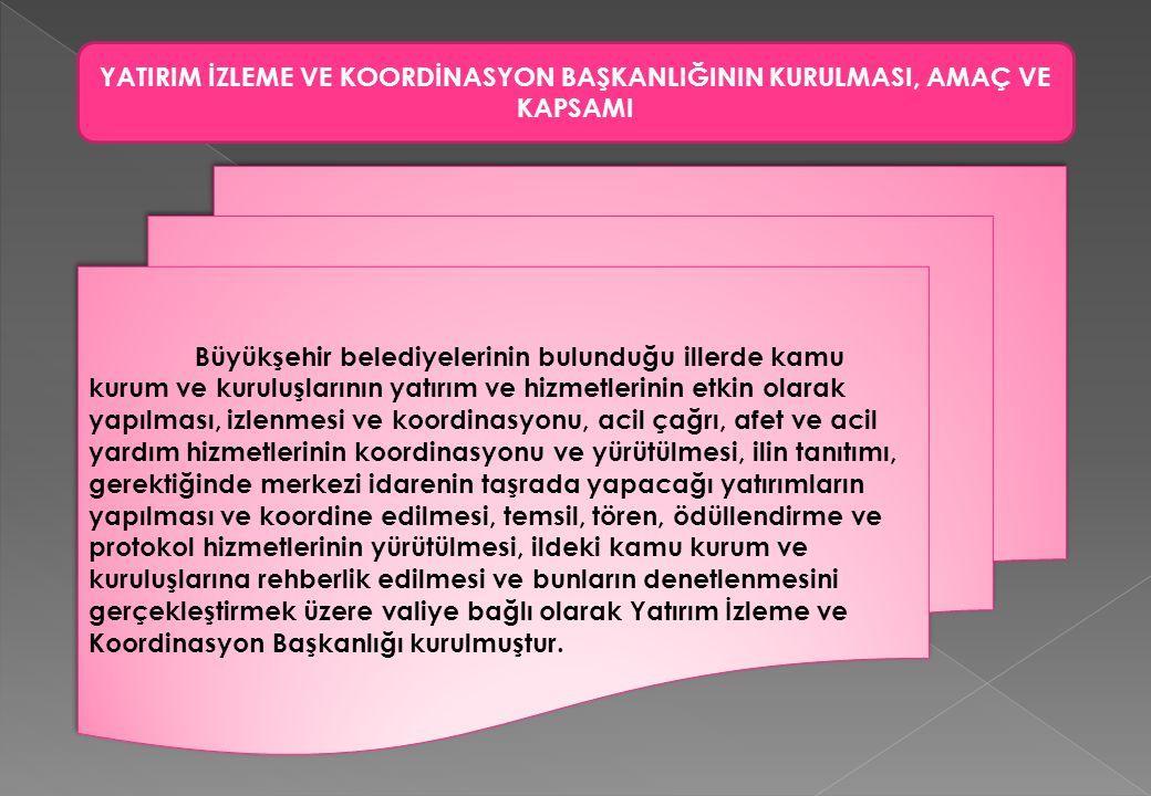 Büyükşehir belediyelerinin bulunduğu illerde kamu kurum ve kuruluşlarının yatırım ve hizmetlerinin etkin olarak yapılması, izlenmesi ve koordinasyonu,