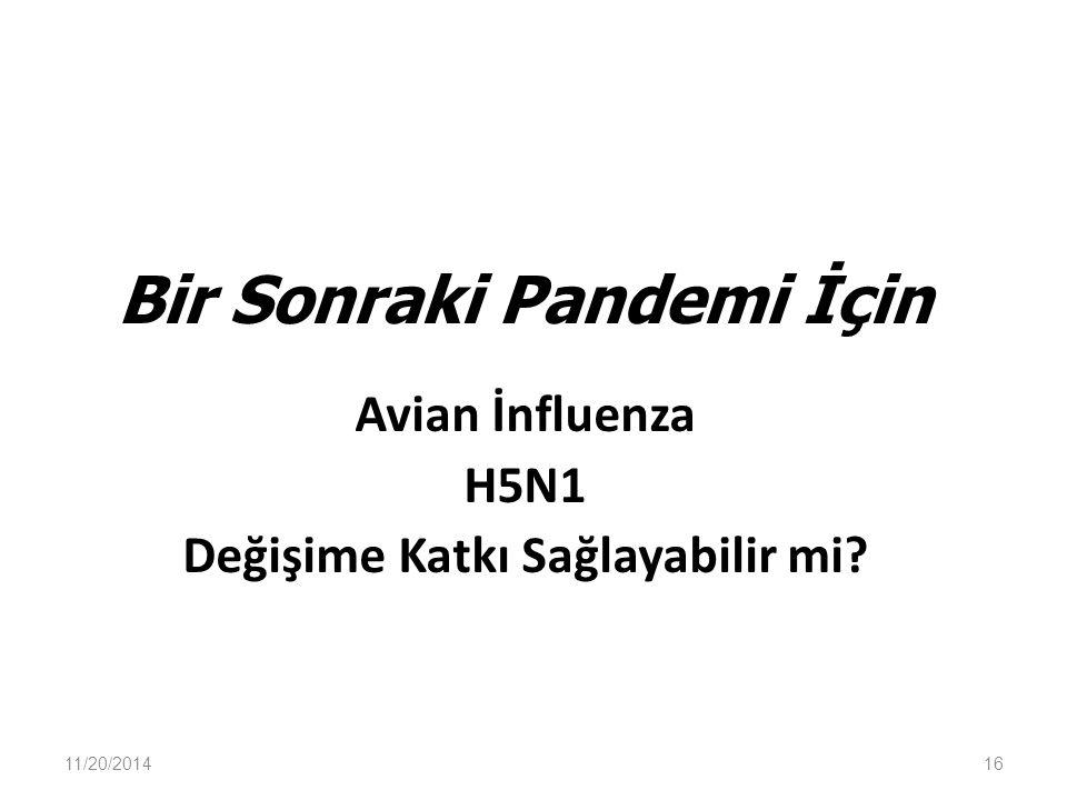 Bir Sonraki Pandemi İçin Avian İnfluenza H5N1 Değişime Katkı Sağlayabilir mi? 11/20/201416