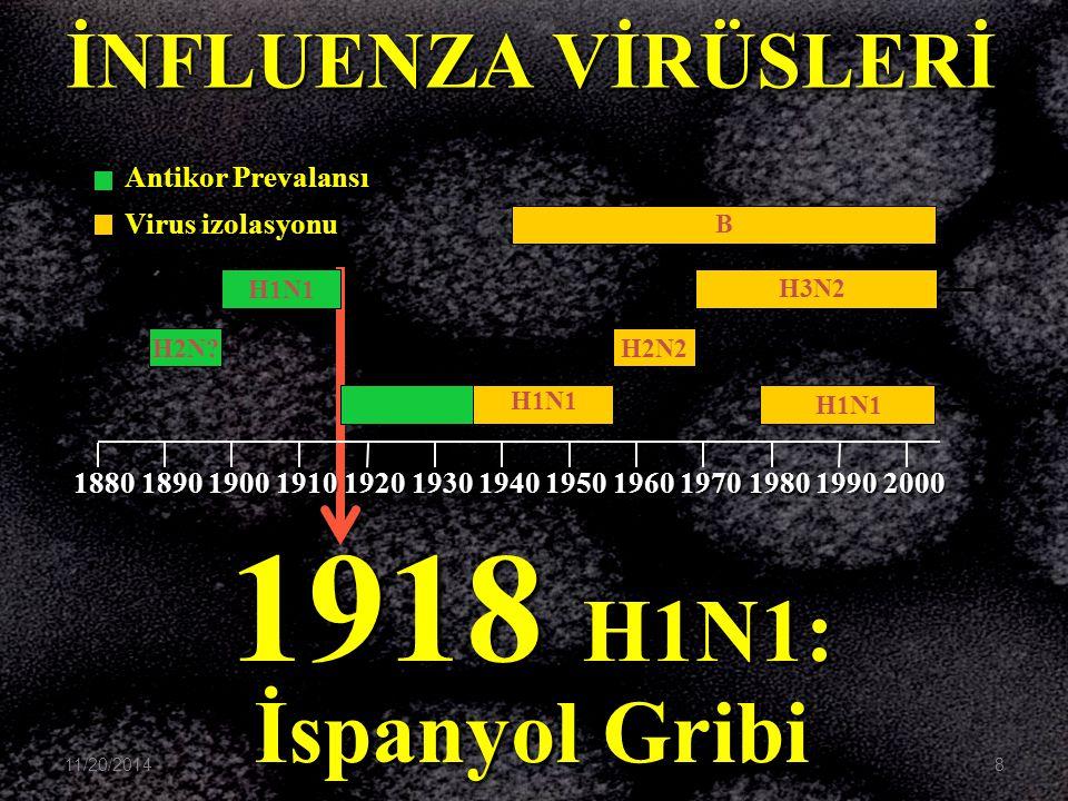 1918 H1N1: İspanyol Gribi B H3N2 H1N1 H2N2 H1N1H1N1 H2N? H1N1 1880189019001910192019301940195019601970198019902000 İNFLUENZA VİRÜSLERİ Antikor Prevala