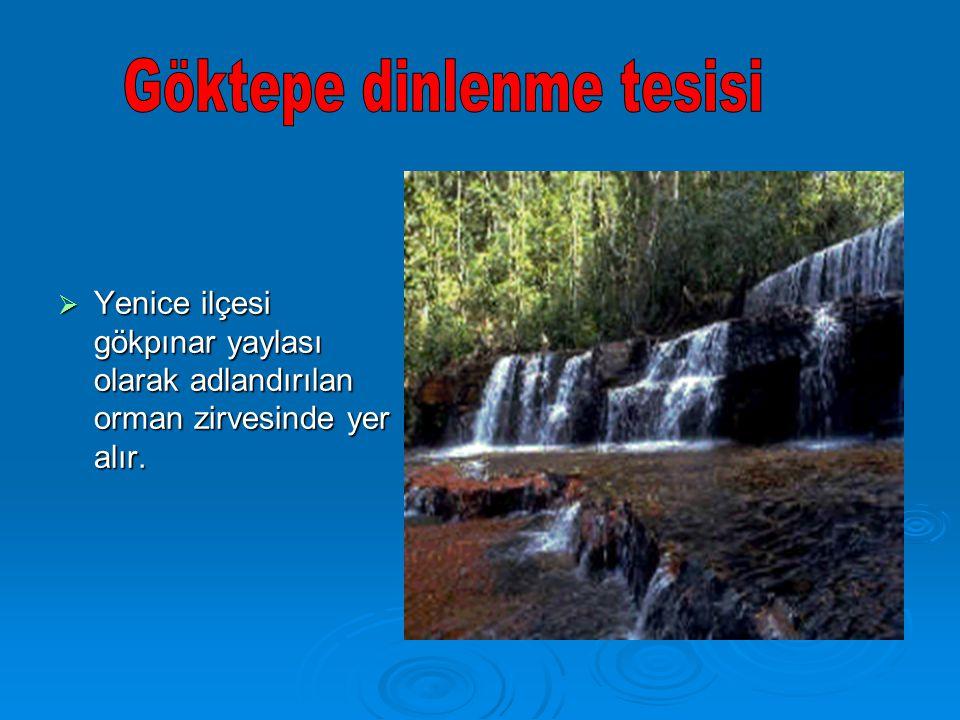  Yenice ilçesi gökpınar yaylası olarak adlandırılan orman zirvesinde yer alır.