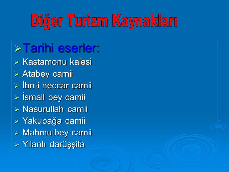  Tarihi eserler:  Kastamonu kalesi  Atabey camii  İbn-i neccar camii  İsmail bey camii  Nasurullah camii  Yakupağa camii  Mahmutbey camii  Yılanlı darüşşifa